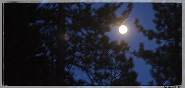 Silent moon