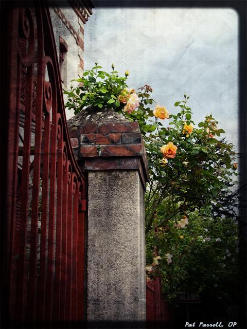 chartres_pillar