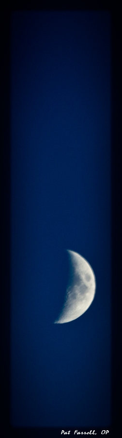 seattle_moon