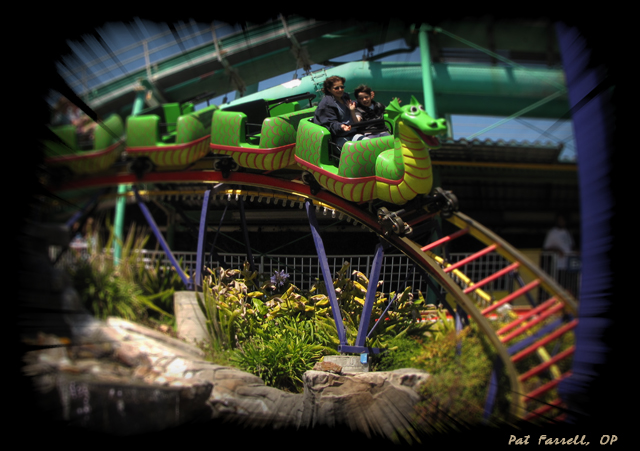 And I daresay that what child doesn't smile (and scream with delight) when riding along the curves of a roller coaster!