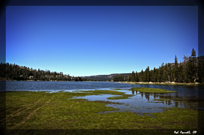 bear_river_reservoir_2011_067