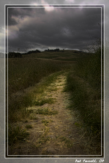 crane_creek_dark_path