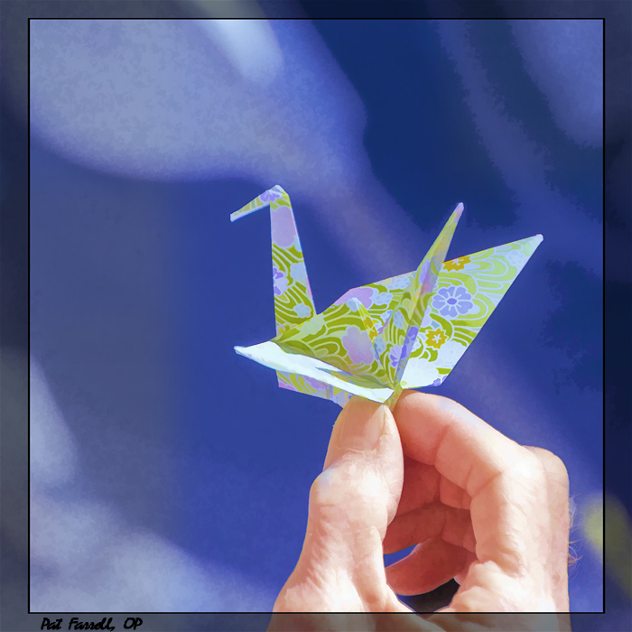 One of the many origami paper cranes from our prayer service in San Rafael in 2012