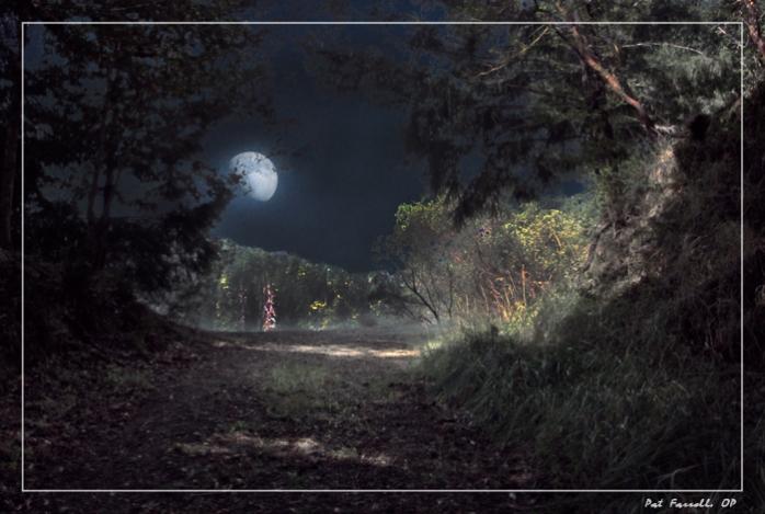 moon_on_path