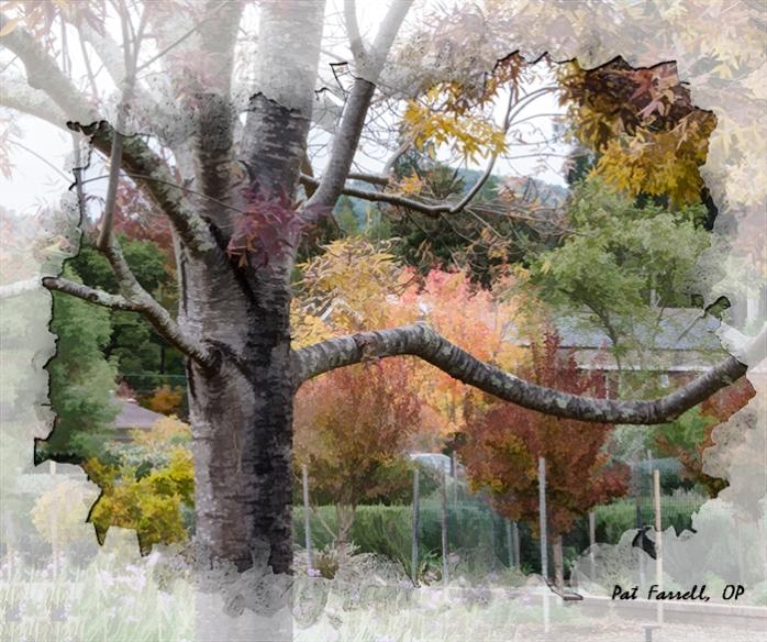srop_autumn_property_2011_008