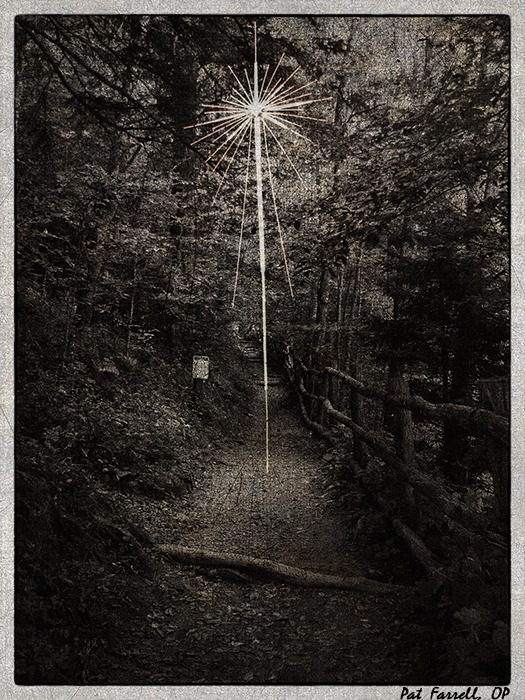 Though the way looks dark, shall I follow?