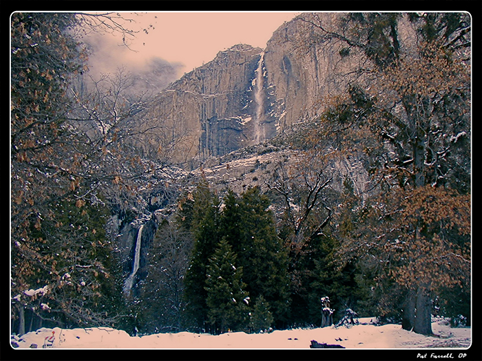 Peace in Yosemite Valley