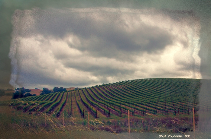 Whether seeing clouds or the vineyard - or both - it is a world of glory