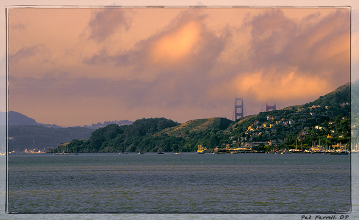 5-13_tiburon_july_2011_015