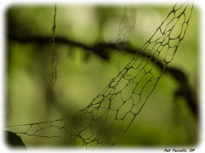 crane_creek_park_2013_168