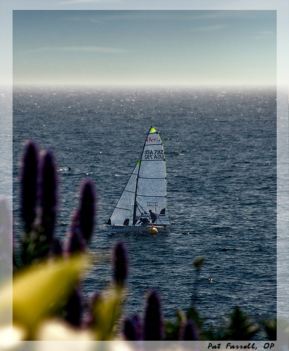 The ecstasy of sailing