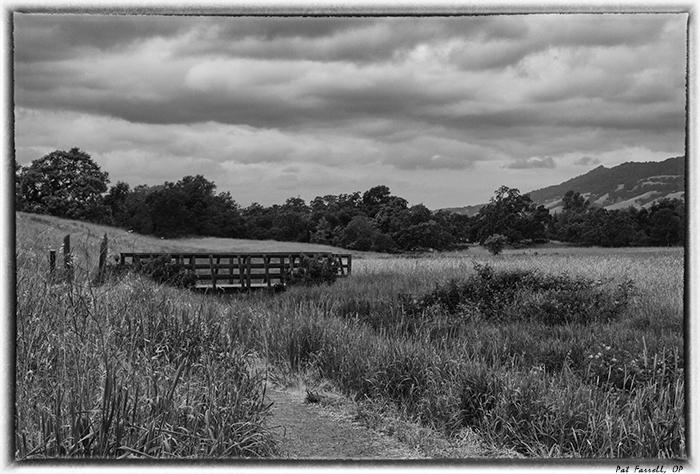 crane_creek_park_2013_053