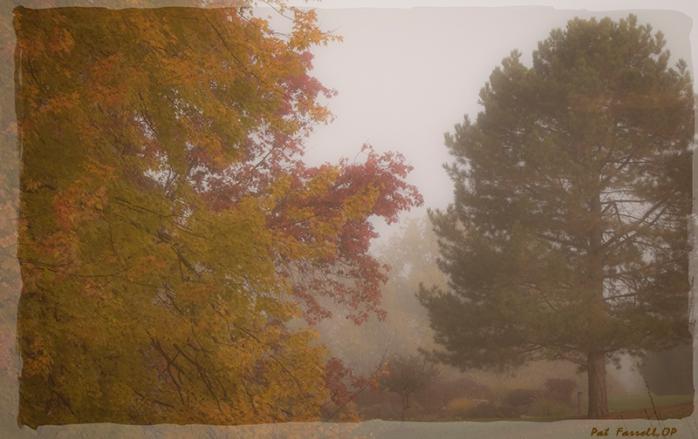 autumn_adrian_2013_053