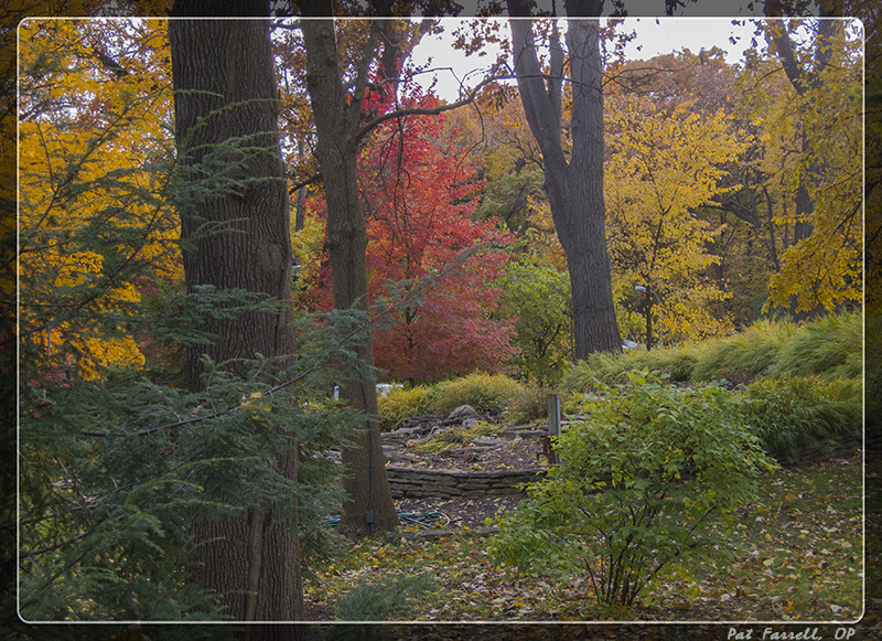 autumn_river_forest_2013_035