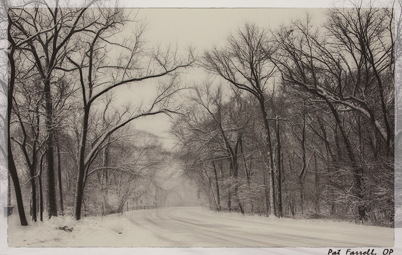 river_forest_snow_2015_28